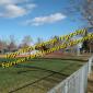 Fairview Park info